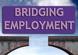 CVTS-FPPortfolio_bridgingemployment-image